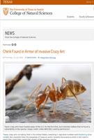 Crazy-Ant-UT
