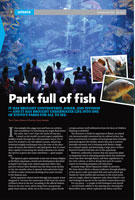 Park-full-of-fish-small